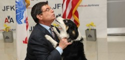 American Airlines, American Dog Resue, and PRAI Support the Work of Nowzad Dogs, Reuniting servicemen and women with the dogs they befriended while deployed over seas