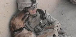 Dog_and_Soldier_Thumbnail